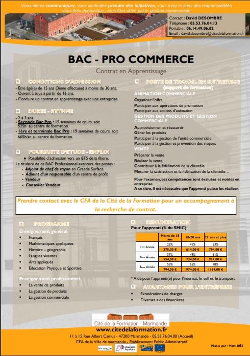 bac com ficheformation